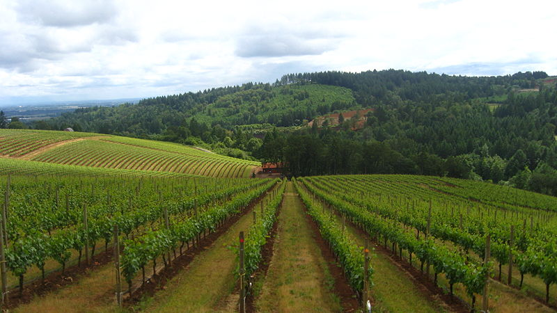 Nerd Nite Portland #13 – The Mystique of Terroir: Geology, Soils, Climate and Wines in the Northern Willamette Valley